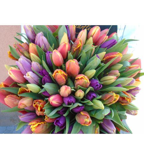 Tulipáncsokor  100 szál