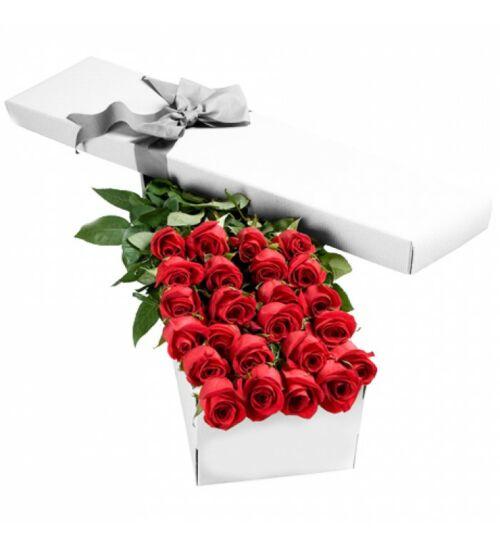 Vörös Rózsa Díszdobozban