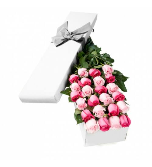 Pink rózsa díszdobozban