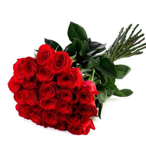 Vörös Rózsa Kötegben