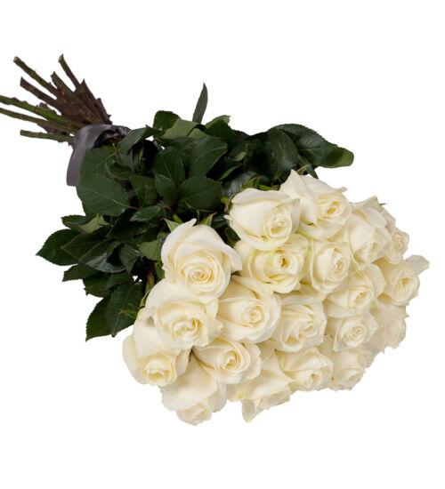 Fehér rózsa kötegben