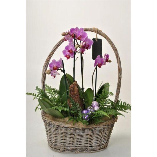 Orchidea Dekoráció 00134