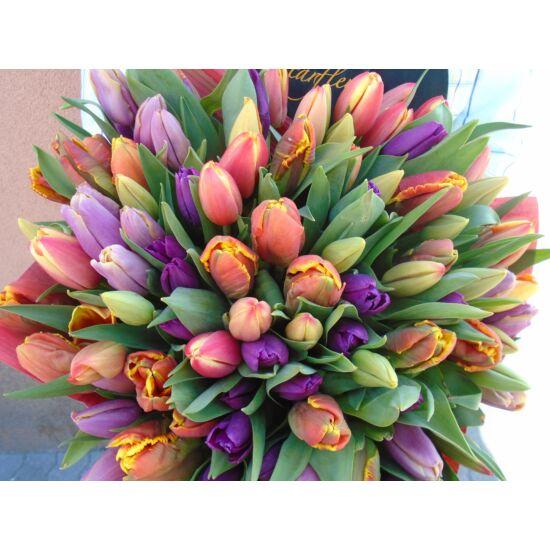 Tulipáncsokor ( 100 szál )