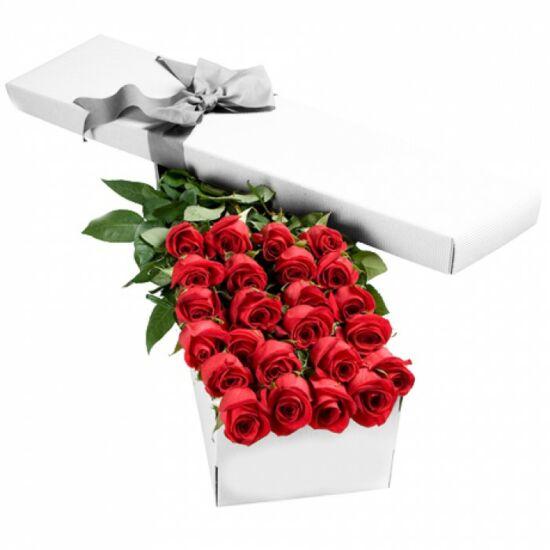 Vörös Rózsa Díszdobozban 211