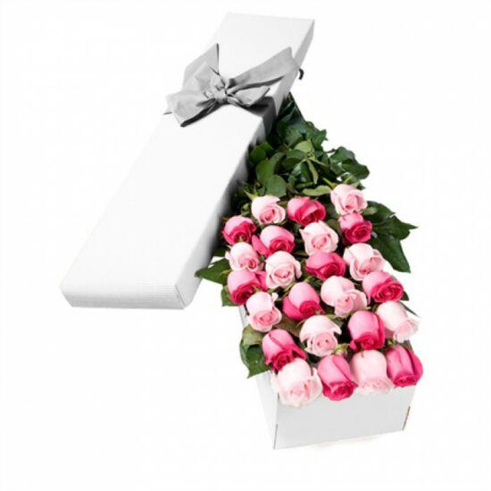 Rózsa Díszdobozban 212