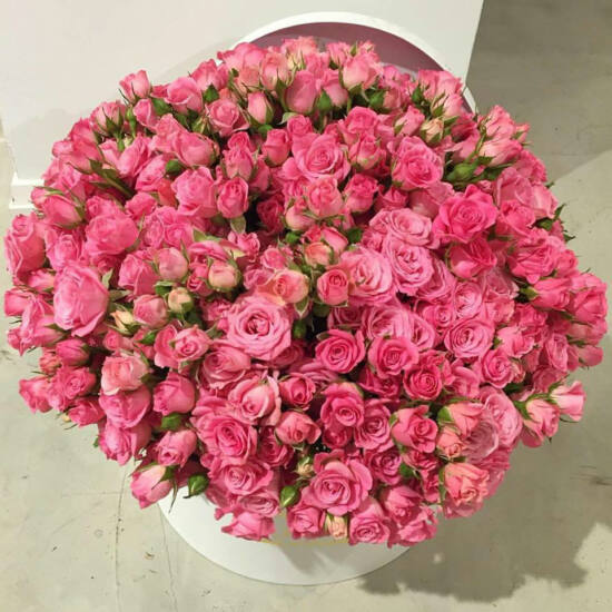 Rózsadoboz 109