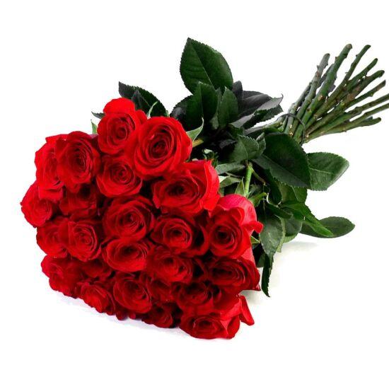 Vörös Rózsa Kötegben VD00102